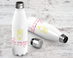 chio-establishedstainlessbottle