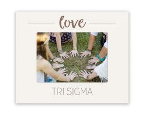 trisigma-loveframe